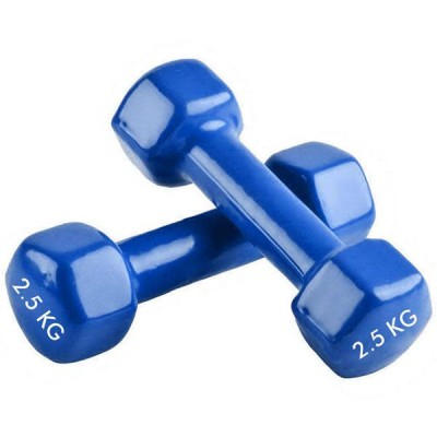 Гантелі FitGo 1х2,5 кг, код: TA-0001-2_5