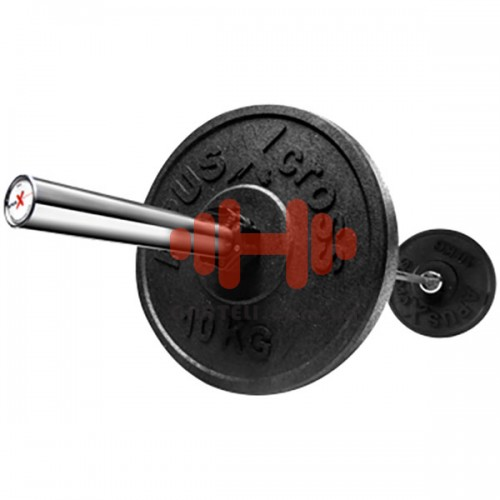 Комплект дисков Apus 100 кг (бампер D=50 мм), код: AS-002